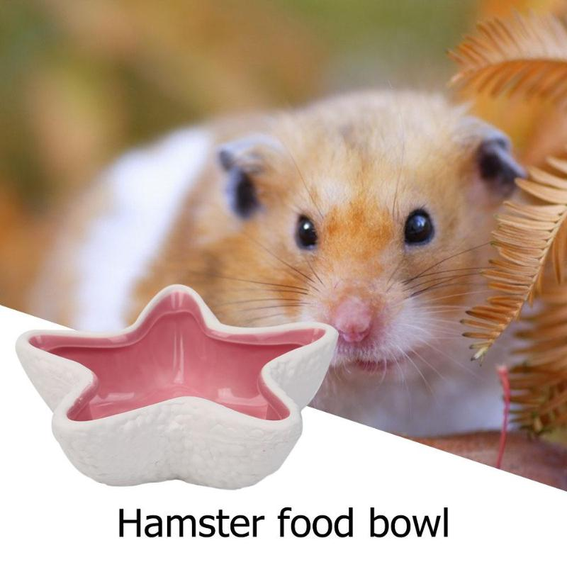 Ceramic Hamster Feeding Bowls Cute Star Shape Hedgehog Cat Guinea Pig And Dutch Pig Food Water Snack Feeder 11*11*3.3cm