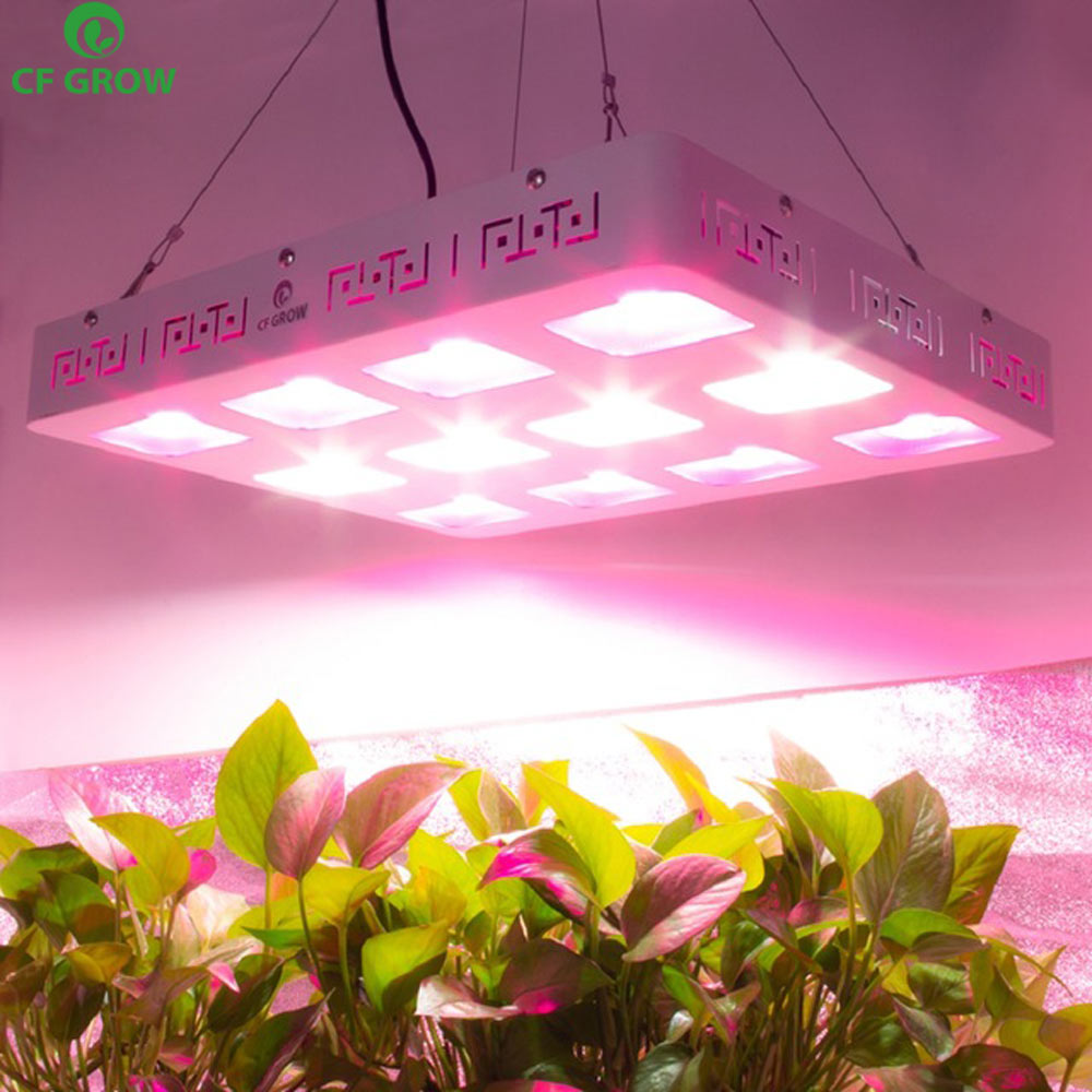 COB LED grandir lumière 300 W 600 W 1200 W LED à spectre complet plante pousser panneau de lampe plantes d'intérieur toutes les étapes de couture Veg Bloom éclairage