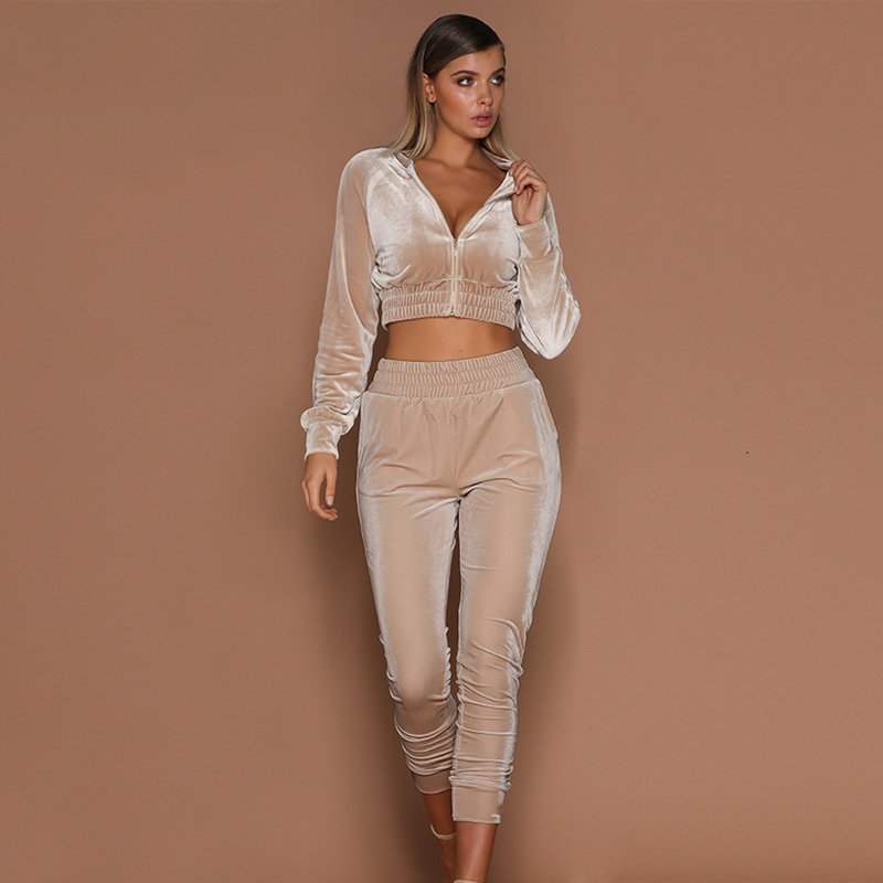 two piece set tracksuit for women Velvet sporting top and pants Autumn Winter Lady casual sports wear fitness outfits Streetwear-in Women's Sets from Women's Clothing on AliExpress - 11.11_Double 11_Singles' Day 1