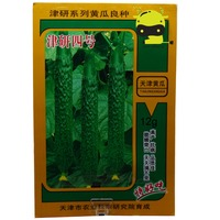 12G/Pack, High Quality 'Jin Yan' Green Long Cucumber Seeds, Crisp Sweet Fruit Cuke Vegetable Seed With Easy Planting