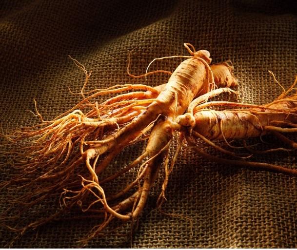 100% Natural 10 anos de extrato de raiz de ginseng/ginseng coreano extrato em pó/organic extrato do ginseng vermelho