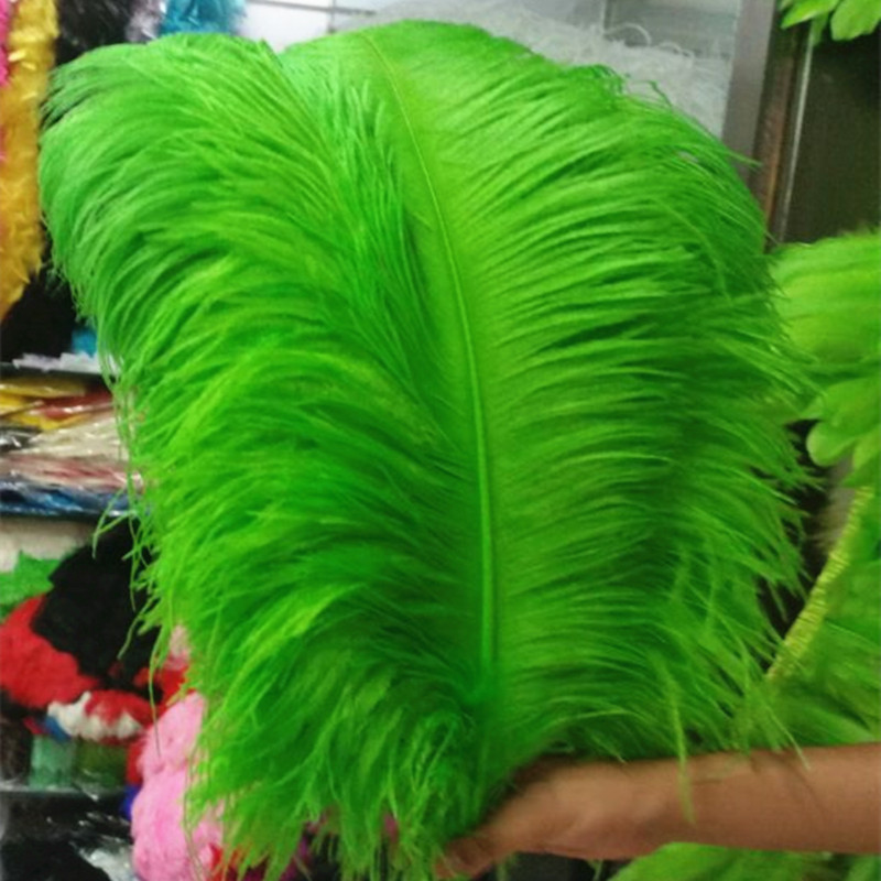 10 pièces épais pôle autruche plume fruit vert autruche plumage 55-60 cm/22-24 pouces plume artware effectuer des décorations