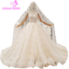 AOLANES Train Bridal Gowns Ball Gown Wedding Dresses With