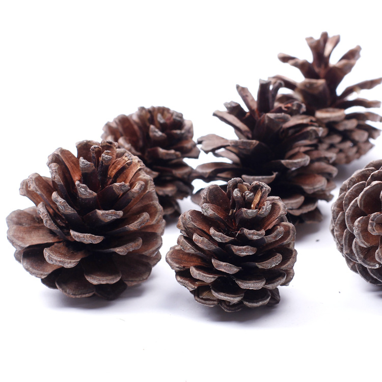 cm pia decoracin de rboles de navidad naturales de plantas en miniatura figuras