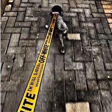 Fashion Nylon Pet Dog Adjustable  Print Traction rope Leash and Collar a02