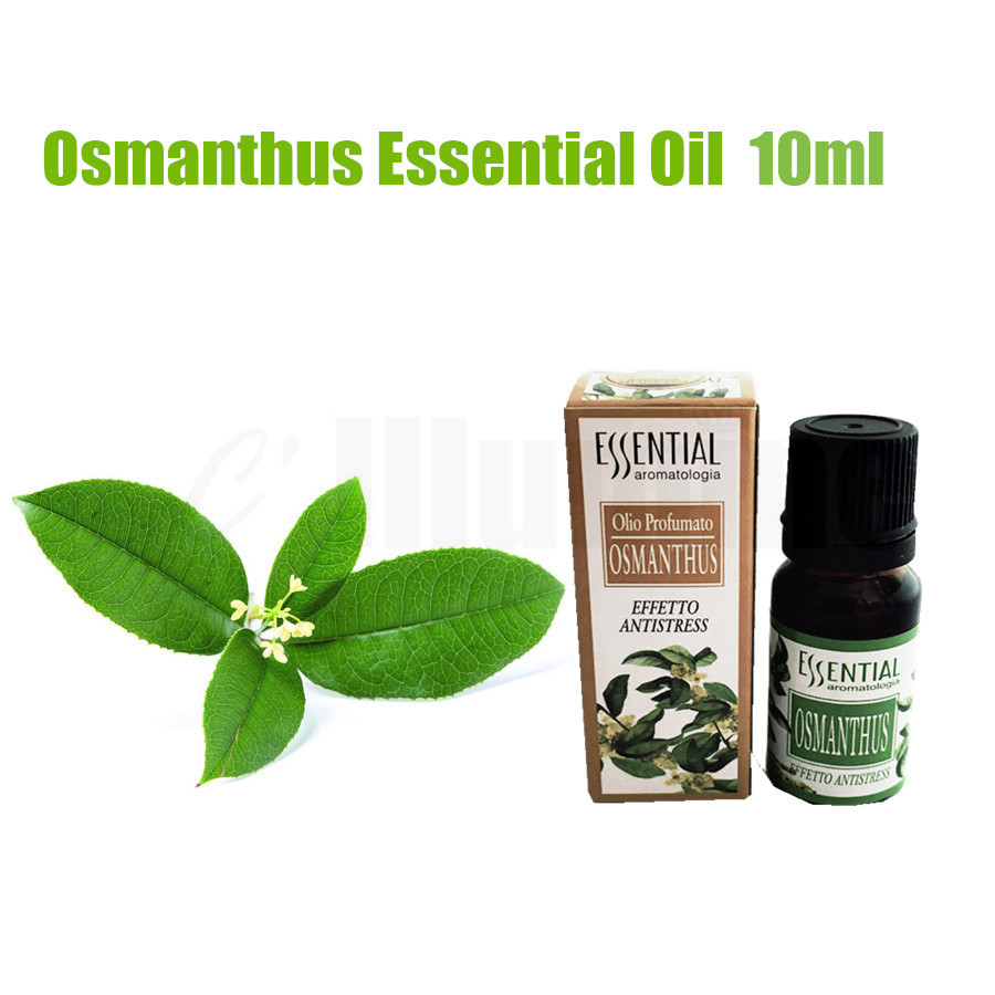 Osmanthus Essential Oil Natural Extract Massage Air Freshening Beauty Salon Pedicure Spa 10ml