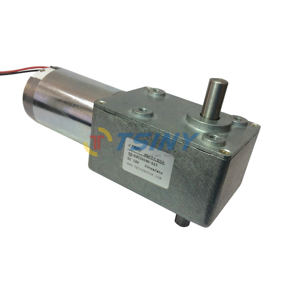 Buy 24v 20rpm Dc Worm Gear Motors Brush