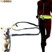 Hand Free Nylon Waist Dog Leash With Pouch Bag Adjustable Elastic Pet Sports Lead Belt Running