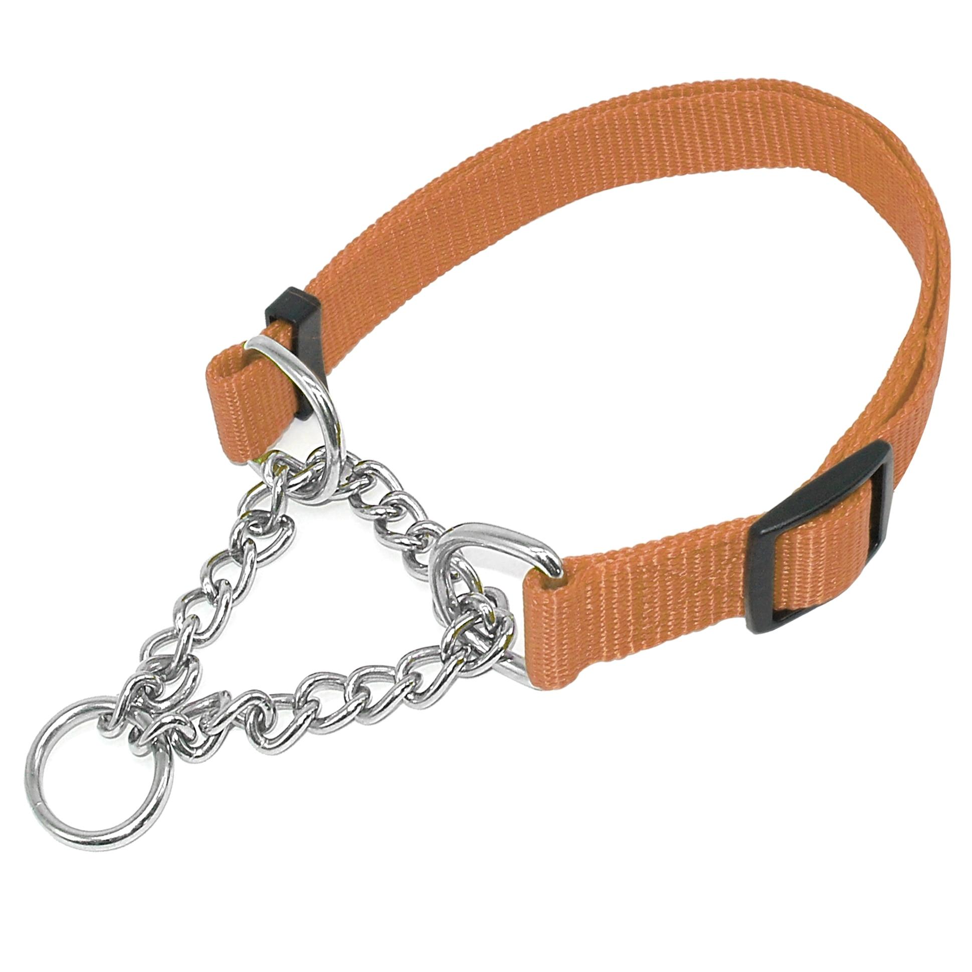 Half Check Collar Dog