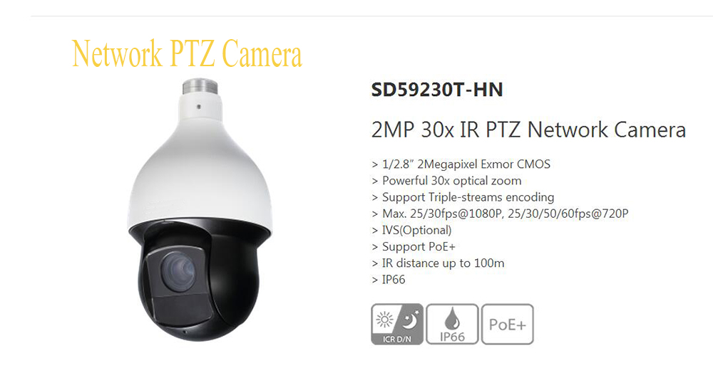DAHUA Outdoor Camera CCTV 2MP 30x Network IR PTZ Dome Camera 1080P Full HD IP High