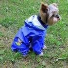 OnnPnnQ Dog Raincoat Hoodies Clothes For Small Medium Dog For Pet Girl Dog Chihuahua Pet Rain Coat Jacket Costumes For Pet Dog