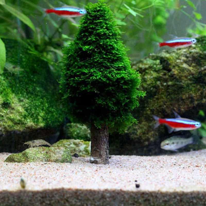Simulación de musgo de Navidad árbol de Navidad cultivo de plantas acuario tanque paisaje decoración nuevo acuario suministros de decoración