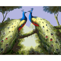 Animal Picture Birds Home Decor No Frame Painting Peacock Picture By Numbers Kits Handwork Draw On