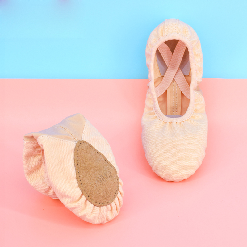 Picture of Women Professional Dance Ballet Shoes Soft Sole Canvas Kungfu Shoes Children Stretch Yoga Cat Claw Ballet Shoes Girls