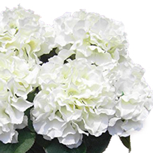 PHFU wholesale 10PCS Artificial Hydrangea Flower 5 Big Heads Bouquet  Diameter