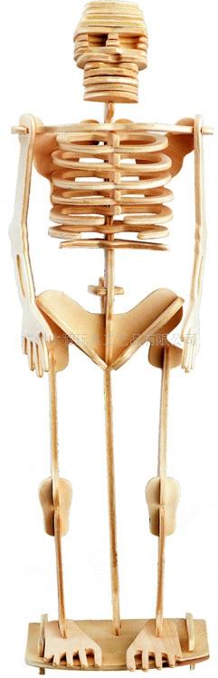 BOHS Building Toys Human Wooden 3D Puzzle Skeleton DIY