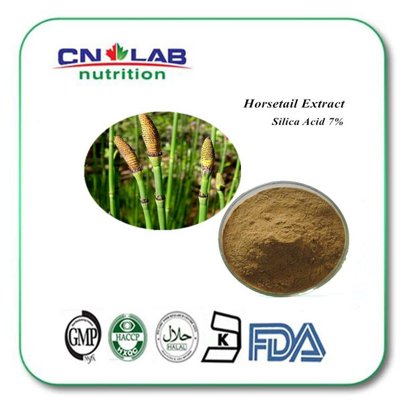 ФОТО Organic horsetail extract organic silica7%/horsetail herb powder/horsetail p.e 1000G