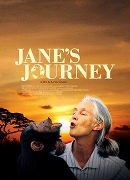 《BBC:珍·古道尔—美女与野兽》2010年英国纪录片电影在线观看