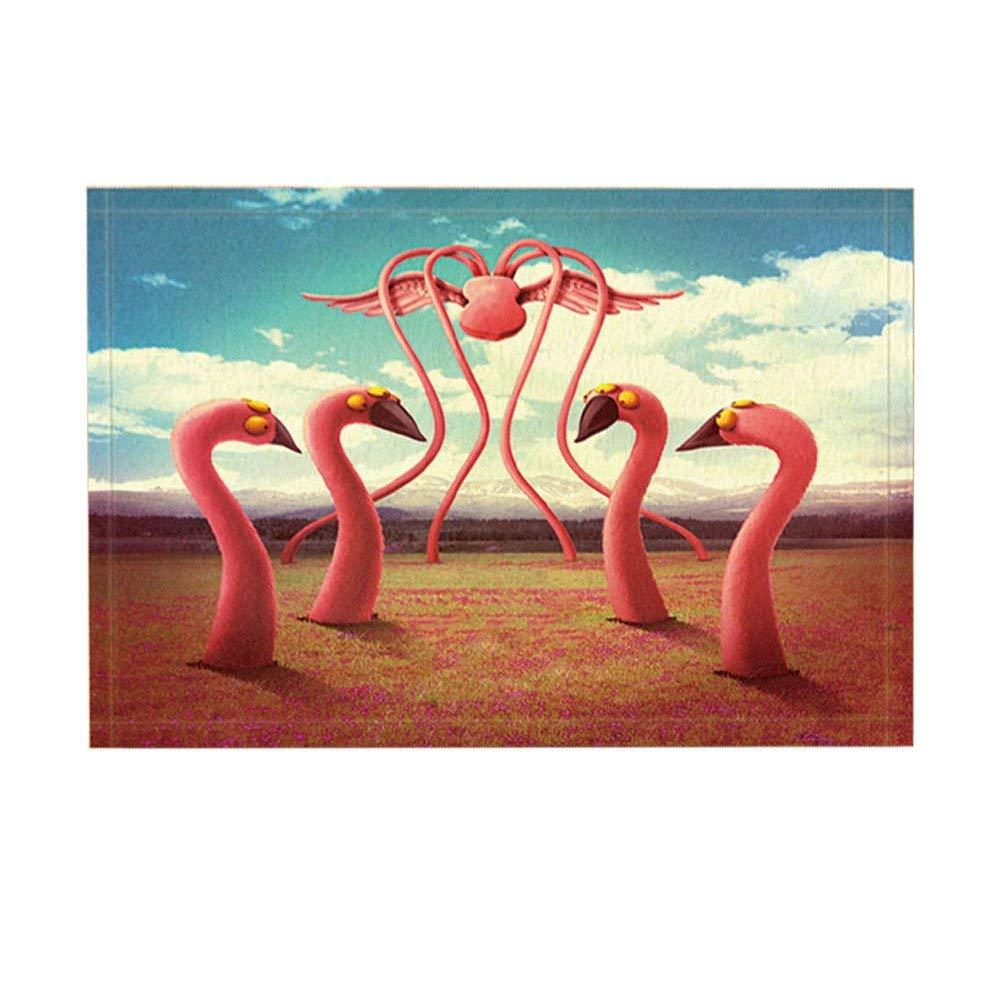 Fantasy kitchen rugs Miraculous Flamingo Octopus Variation Bird Spread Wings Non Slip Doormat Floor Indoor/Outdoor Doormat AliExpress