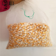 10 Pcs 30*45cm Garden Insect Barrier Net Protect Bags Plant Seed Carrier Bag, Mosquito Bug Insect Barrier Bird Net