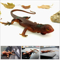 34cm Trick toy Practical Jokes Toys Simulation Lizards Fool Day Prank Toys Mischievous Small Animals Rubber Lizards Random Color