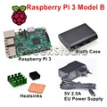 Raspberry Pi 3 Model B 1.2GHz 1GB RAM WiFi & Bluetooth + Heatsinks + ABS Black Case + 5V 2.5A EU/UK/AU/US Power Supply