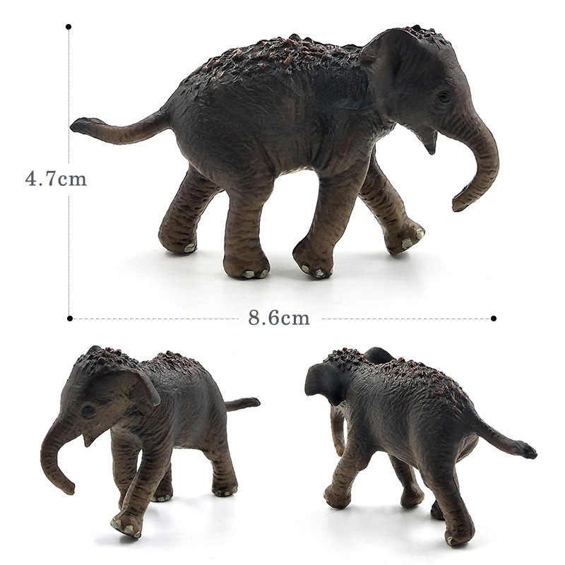 Simulação pequeno esquilo elefante wombat floresta modelo animal figura de plástico decoração brinquedos educativos estatueta presente para crianças