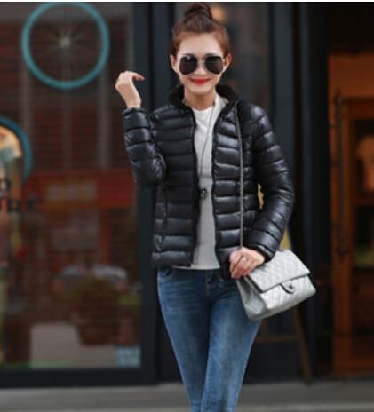 Ücretsiz Kargo 2016 yeni kış ceket kız ince boyutu uzun kollu pamuk tüy yaka sıcak mizaç