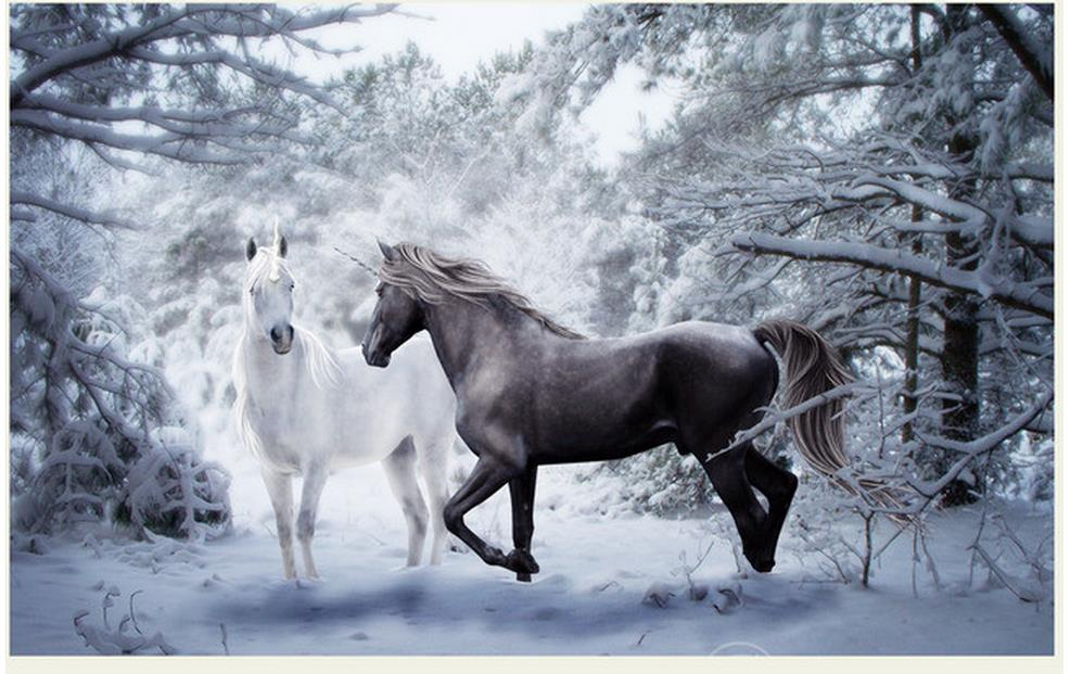 Us 126 58 Offhome Decoration Wall 3d Wallpaper Snow Horse Black And White Artistic Background Photo 3d Wallpaper In Wallpapers From Home