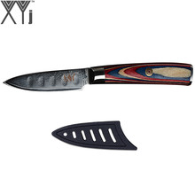 XYj Damascus Kitchen Cooking Knives Fruit Knife Japanese DamascusKitchen Knife VG10 67 Layer Ultra Sharp Colorful Wood Handle(China)