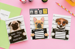 Novelty Naughty Prisoner Dog Scratch Card Postcard Greeting Gift Card Christmas Birthday Card Letter Envelope Gift Card