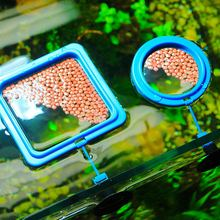 1Pcs Aquarium Feeding Ring Fish Tank StationWater Plant Buoyancy Suction Cup Floating Food Tray Feeder Square Circle Accessory