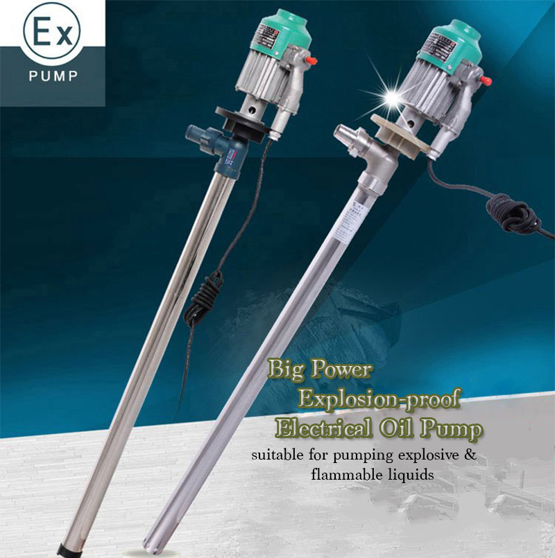 220V Explosion Proof Electrical Oil Pump Petrol Gasoline High Viscosity Liquid Transfer Pump