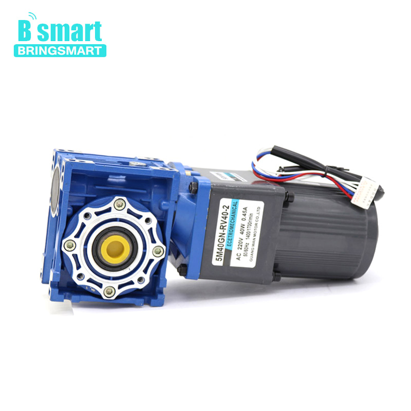 Bringsmart  220V AC speed motor 40W worm gear two-stage gear motor large torque positive and negative motorBringsmart  220V AC speed motor 40W worm gear two-stage gear motor large torque positive and negative motor