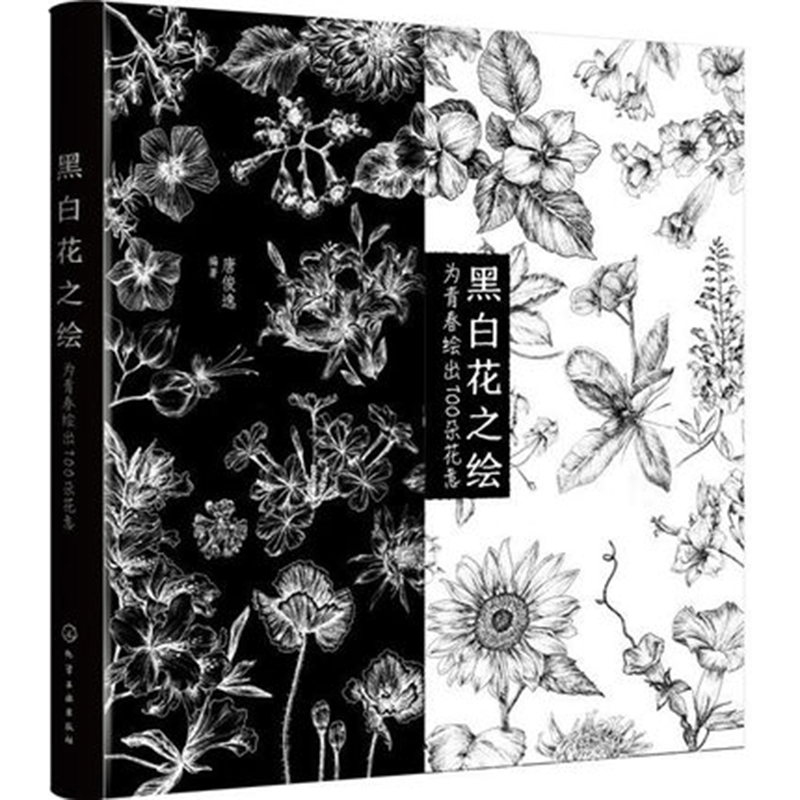 Black And White Painting Sketch Zero-based Self Getting Started Tutorials Textbook Book Sketch Linyi Landscape Books