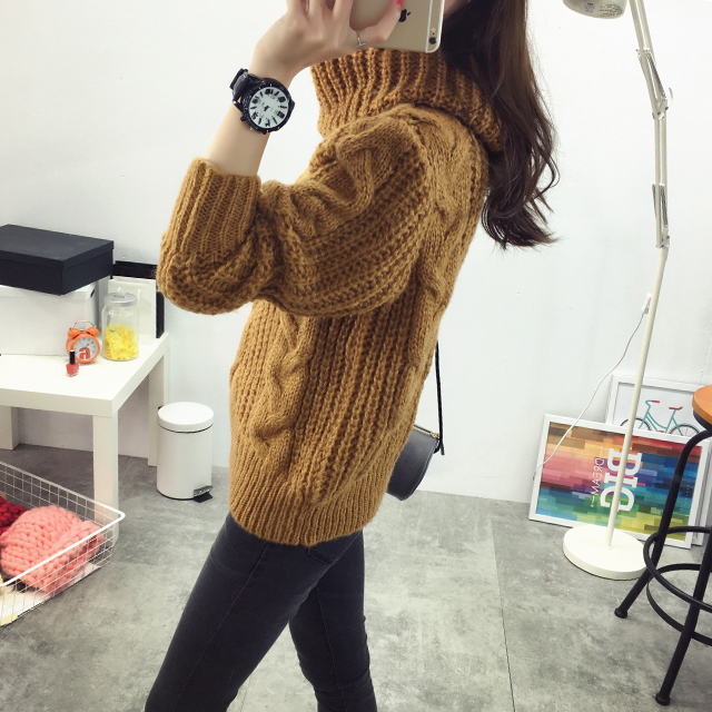 Fashion women's new Autumn winter Turtleneck sweater big size Hemp ...