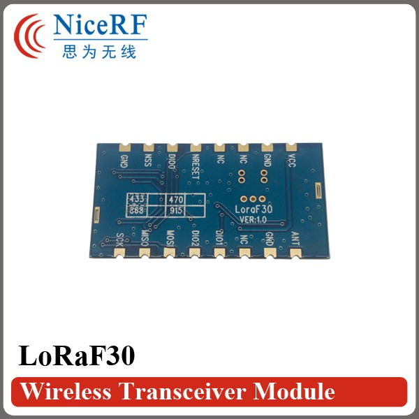 LoRaF30-4
