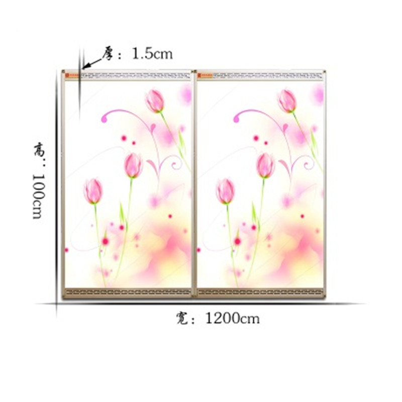 MYP5-YJX,5 PCS/lot,60*100cm,Free shipping,wall mount crystal,warm wall with picture,Infrared heater,carbon crystal heater free shipping 5 pcs lot si4463 b1b fmr si4463 44631b qfn48 new in stock ic