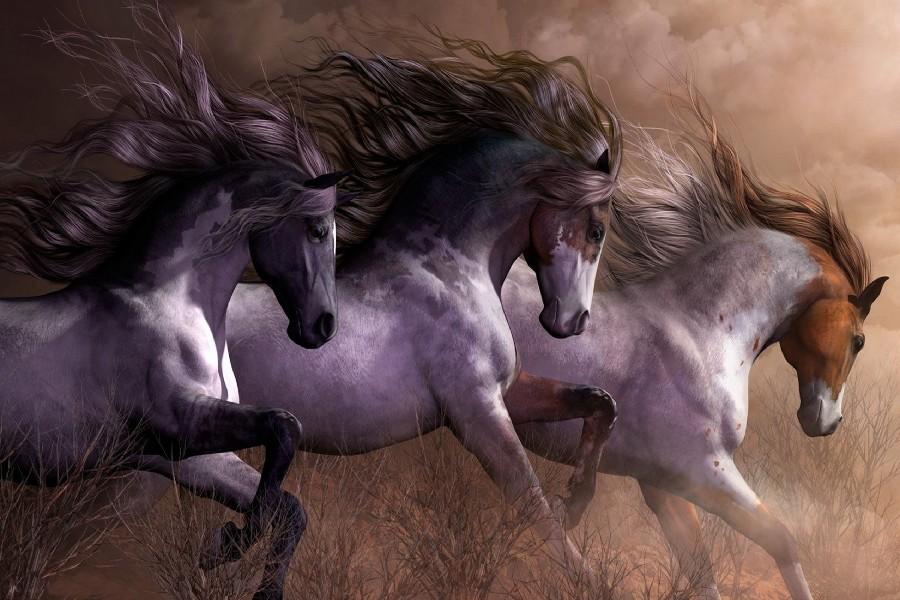 Diy Frame 3 Horses Running Wild Natural Animal Art Silk Fabric Wall