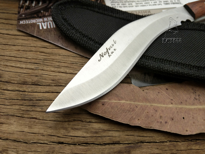 03  LCM66 Mini machete scorpion outside jungle survival battle cs go Chilly metal Fastened blade looking knives self protection fruit knife HTB1J8ioSXXXXXXyXVXXq6xXFXXXW