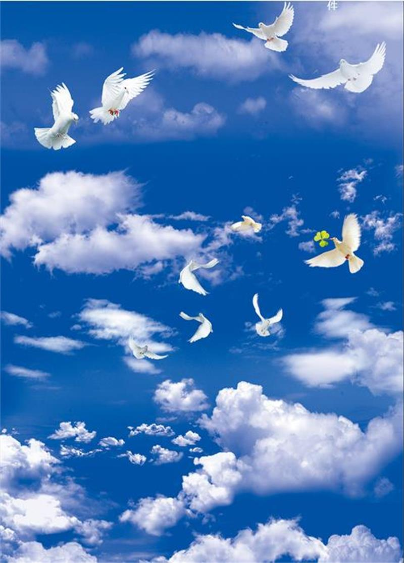 20d ceiling murals wallpaper custom photo non woven blue sky white clouds  dove painting 20d wall mural wallpaper for living room