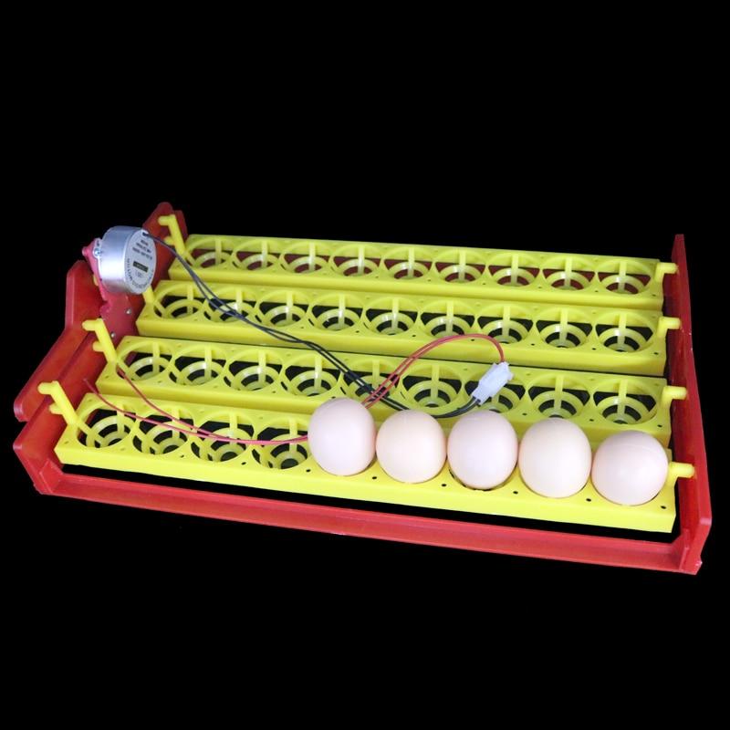 Ny 36 Eggs Automatisk Inkubator Drej Æggene Bakke Kylling Fasan Bakke Automatisk Inkubator Eksperimentel Undervisningsudstyr
