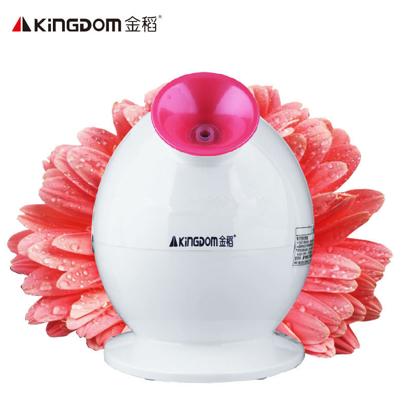 220V Face Humidifiers Steaming Face Machine Household Nano Thermal Spray Evaporating Face Machine Keep Face Humidity EU/AU/UK