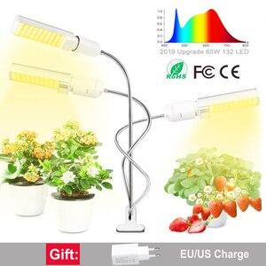 Full Spectrum LED Plant Grow L