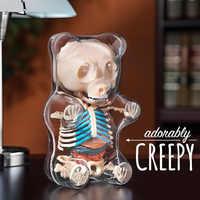 4d большой медведь прозрачный перспектива животное анатомический скелет кости головоломка сборка игрушка для детей