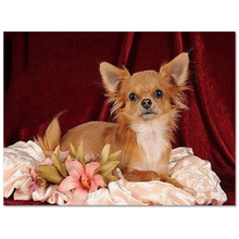 Dog  3D DIY Diamond Embroidery Needlework Square Diy Painting Fashion Home Decor Cross Stitch