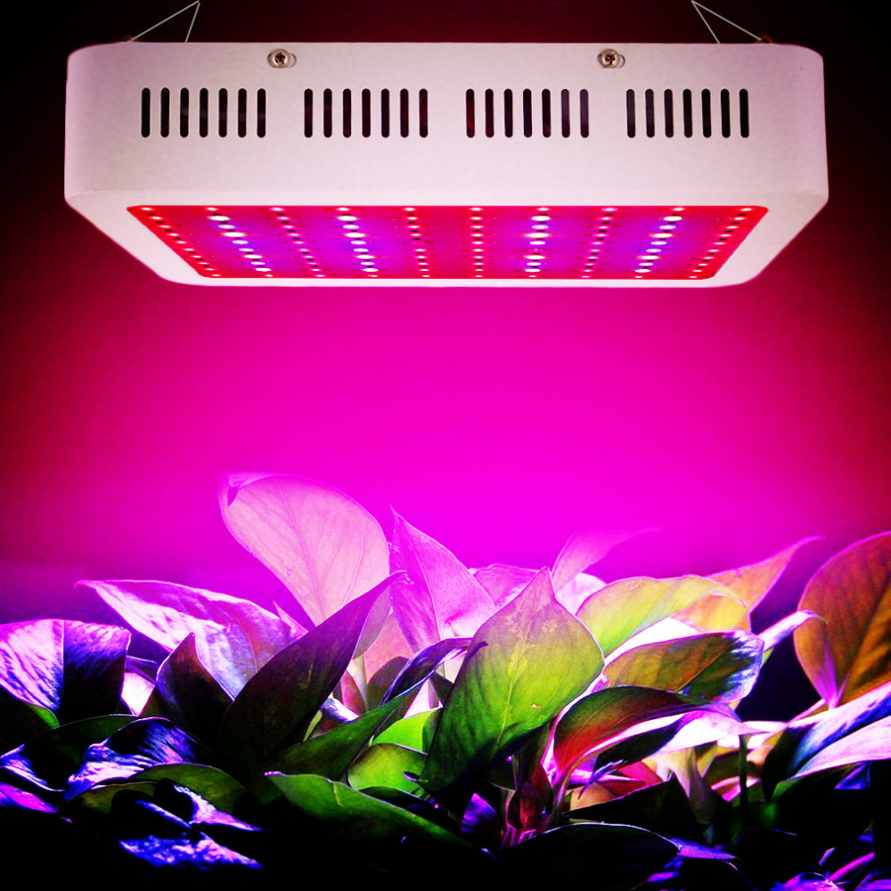 300W 1000W LED Grow Light 380-730nm Full Spectrum LED Plant Grow Light For Indoor Plants Flowering And Growing on sale mayerplus 600w double chip led grow light full spectrum for 410 730nm indoor plants and flowering high yield droshipping