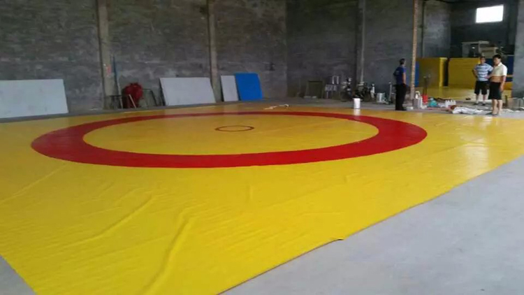 4m 4m Professional Pvc Wrestling Mat Cover Sanda Floor Mat
