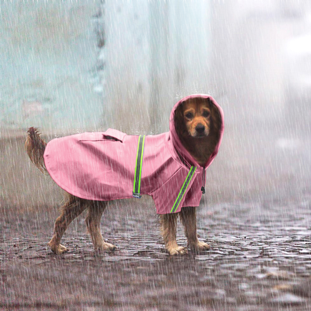 Köpəklər üçün lilac Suya davamlı it palto gödəkçə - Ev heyvanları və zoo məhsullar - Fotoqrafiya 5