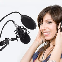 Professional Microphone Condenser Microphone for Video Recording Karaoke Radio Studio Microphone With Anti Shock Mount